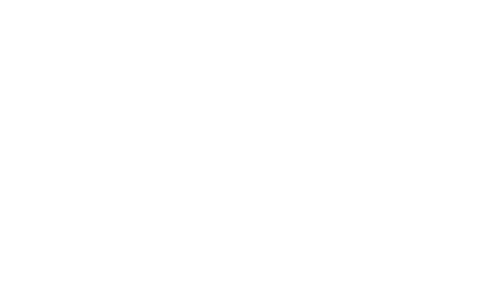 white momentum logo